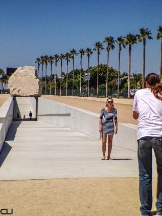 Palm trees and a rock - very LA...