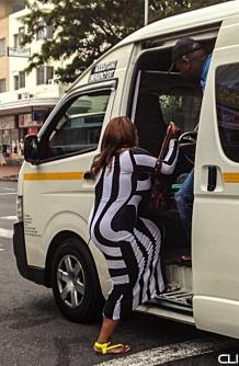 Urban Zebra (5)