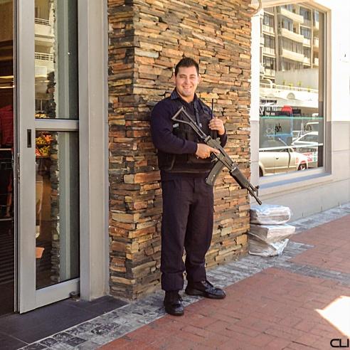 293_ArmedGuard_pvw