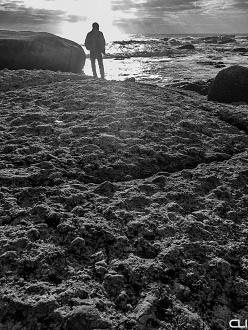 beachstilllife8_pvw