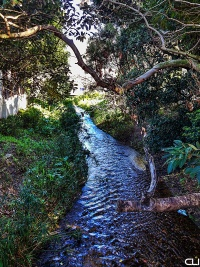 Creek in Hout Bay