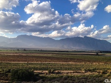 Nuy Valley, wine farm area outside Cape Town.