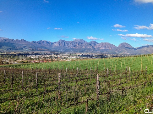 Overlooking Paarl Valley