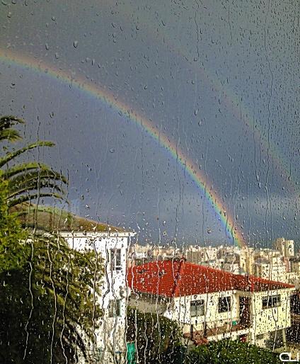 rainbow05_pvw
