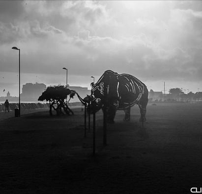 Rhino-saurus sculpture on the Sea Point beachfront