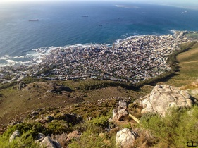 Sea Point from the top of Lion's Head