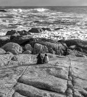 Rock creatures...