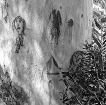 Tree art, Montagu.