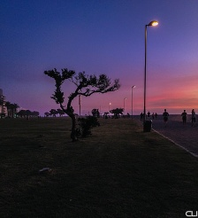 Sea Point beachfront