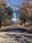 Autumn in suburban Worcester.