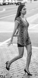 DancingLeopard2_pvw